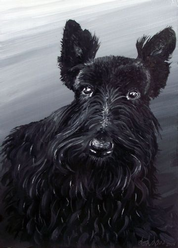 The Black Scottie